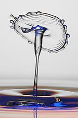 Wassertropfen_236